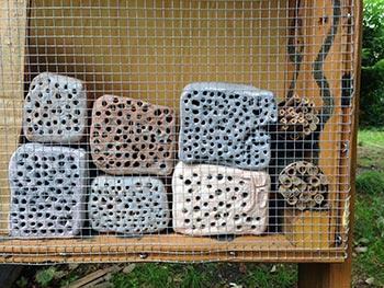 Das Wildbienenhaus